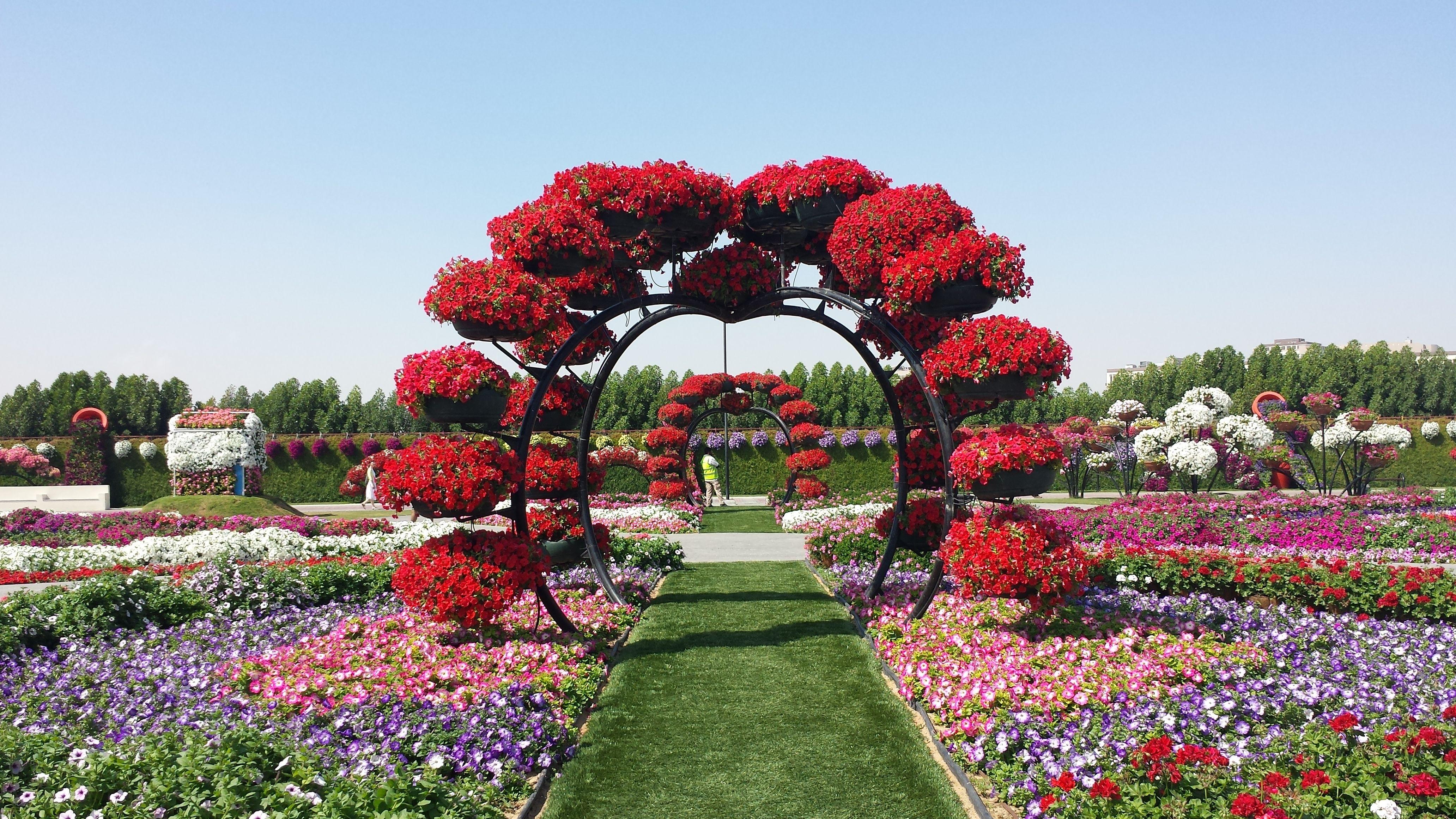 Dubai Miracle Garden Pieces of My Life Çiçek, Bahçe