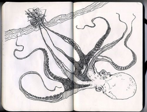 Octopus Shipwreck Drawing tumblr_lr4cfwYj...