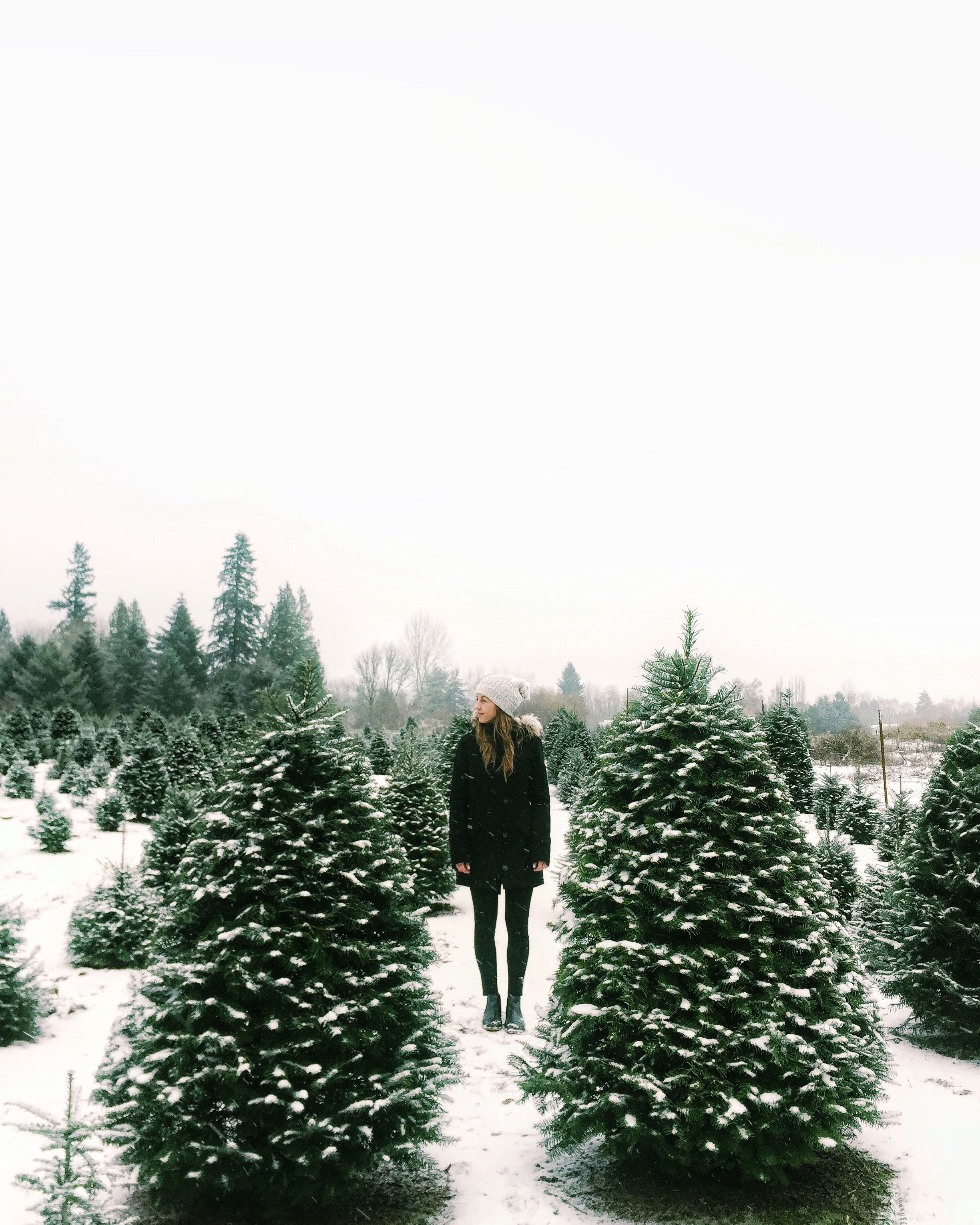 Pinterest Morgangretaaa Christmas Wonderland Winter Christmas Winter Wonder
