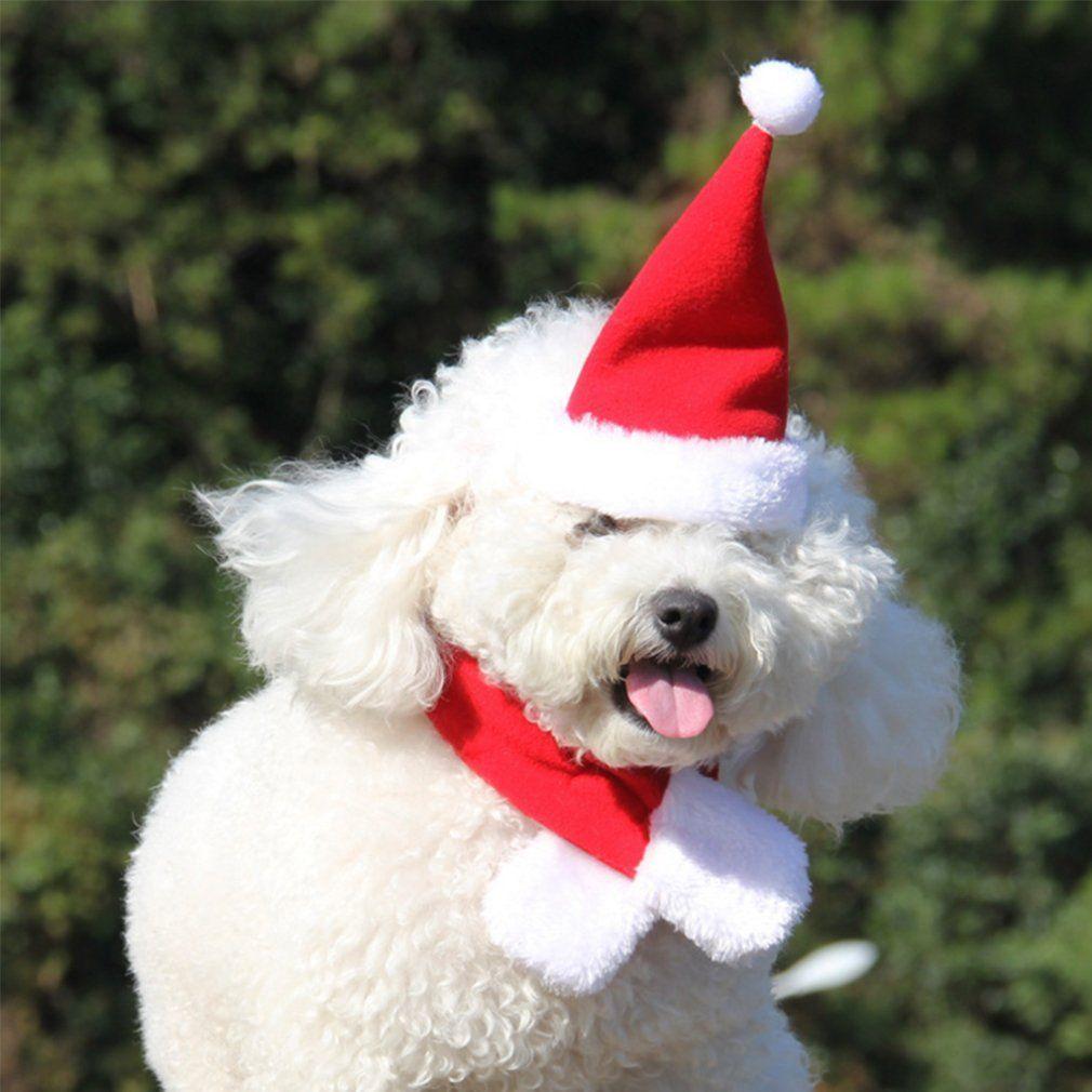83626c89f Pet Dog Cat Santa Hat Adjustable Pet Christmas Holiday Santa Hat ...