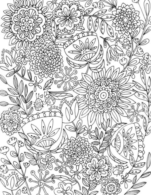 Libros de Colorear para Adultos | Adult coloring