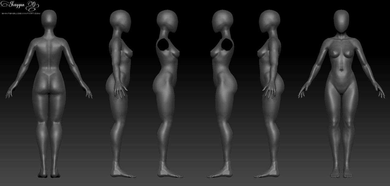 Female 3d Anatomy Template By Shintenzuiantart On