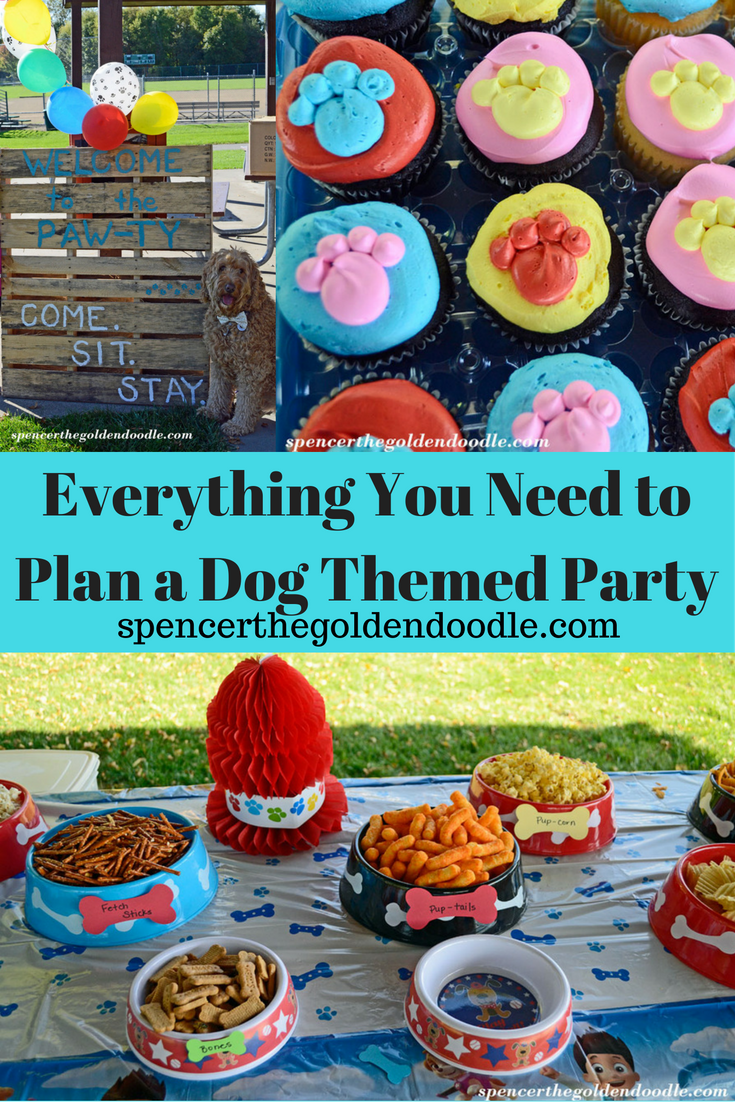 Everything You Need To Plan Your Next Dog Themed Party From Decor Food Activities Spencer The Goldendoodle Has