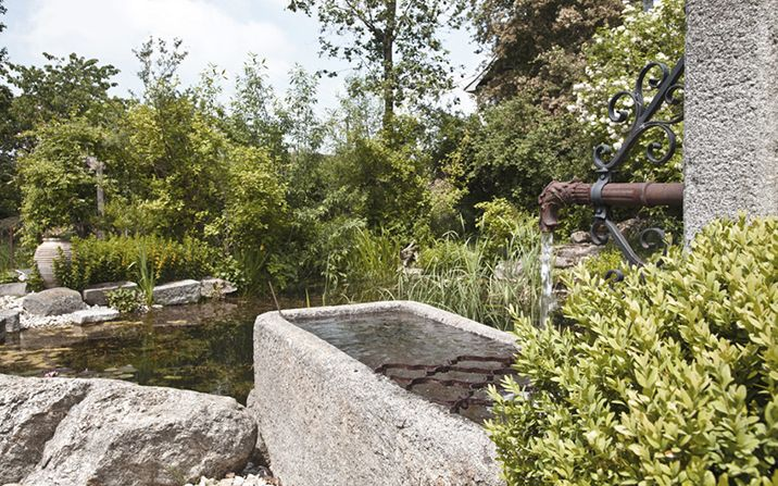 Wasser Im Garten Schwimmteiche Und Naturpools Von Gartenzauner Oo In 2020 Wasser Im Garten Garten Wassertrog