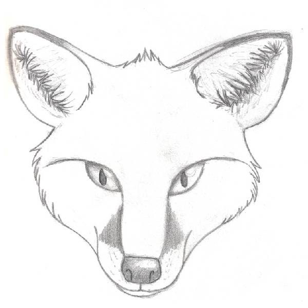 How To Draw A Fox Head Step By Step Forest Animals