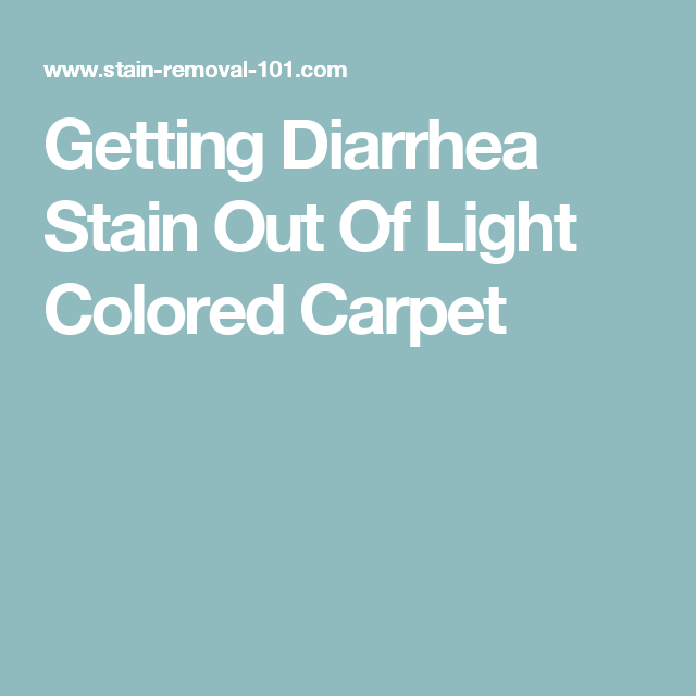 Dog Has Diarrhea On Rug: Getting Diarrhea Stain Out Of Light Colored Carpet