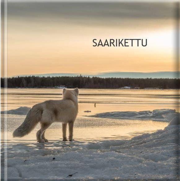 Hannu Moilanen, Kokkola, Suomi - Sarikettu