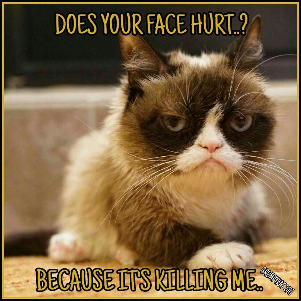 Another grumpy cat meme by the other grumpy kat 2017 does your face hurt