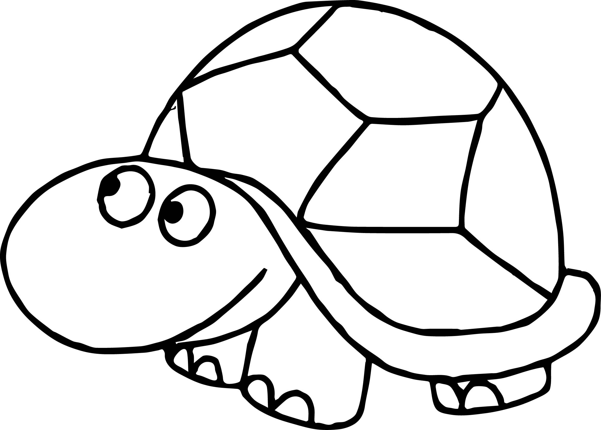 26+ Printable turtle coloring pictures ideas