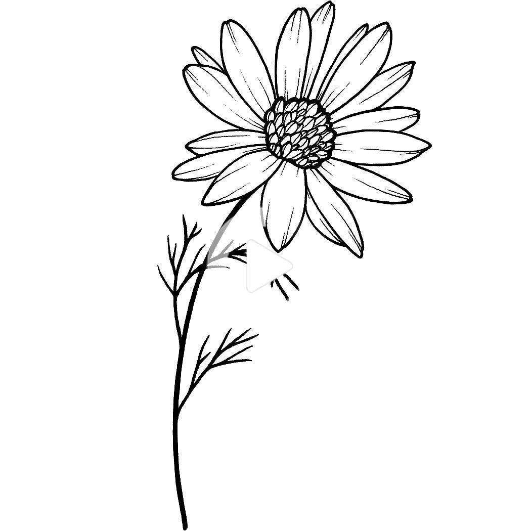 Nonchalance In 2020 Sunflower Tattoo Simple Tattoos Daisy Chain Tattoo