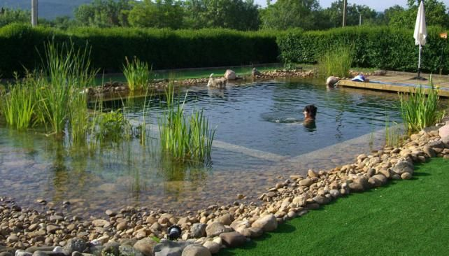 piscinas ecol gicas una tendencia que crece en el mundo