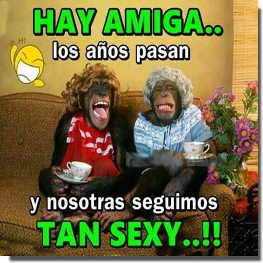 Me hizo la mañana Michelle! | Funny spanish memes, Funny ...