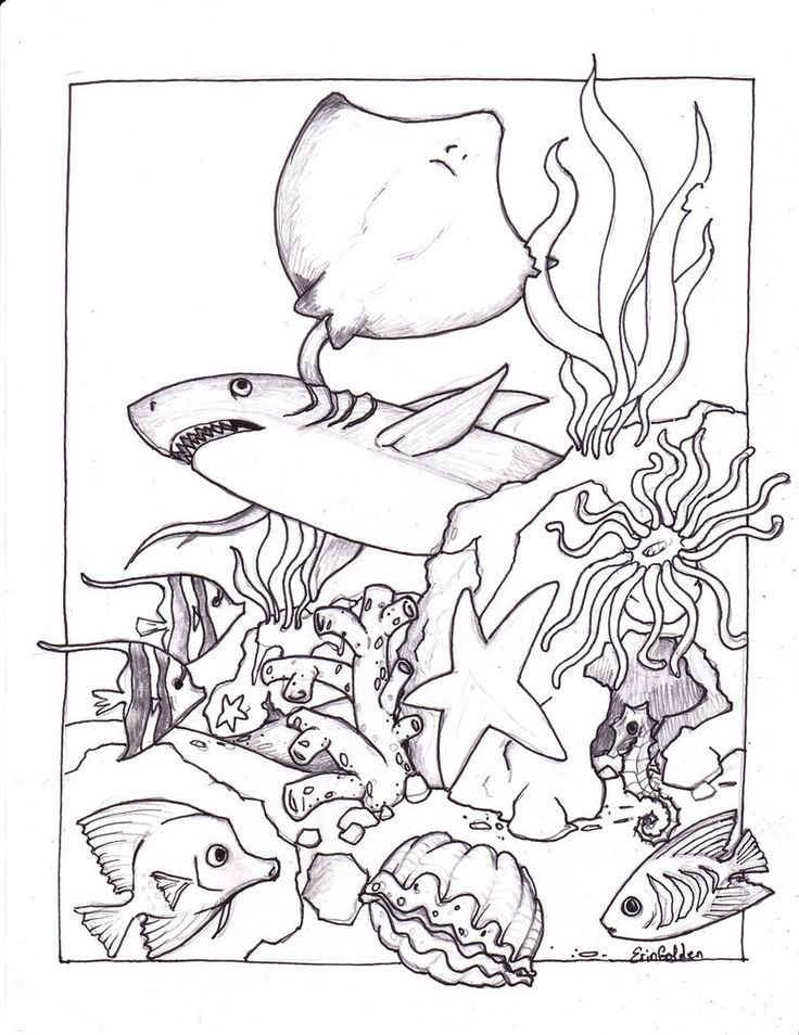 Kidsnfun coloring page Fish Underseascape Fish Art Ideas