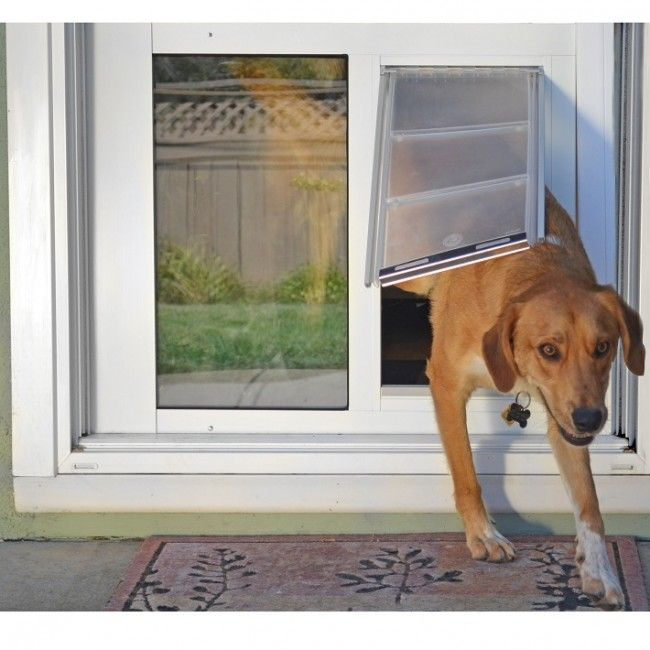 Thermo Sash 3e Pet Doors For Sash Windows Dog Stuff Pinterest