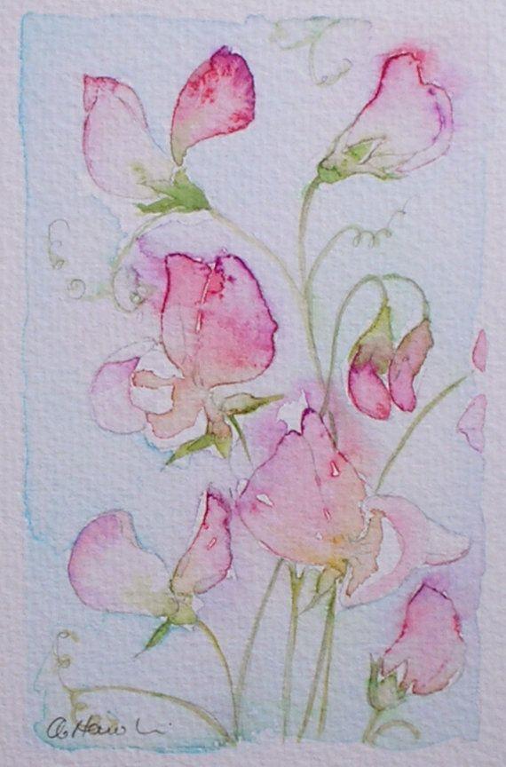 PINK SWEET PEAS original small watercolour painting by Amanda Hawkins 9 x 14cm decorative art floral artwork cottage garden flowers
