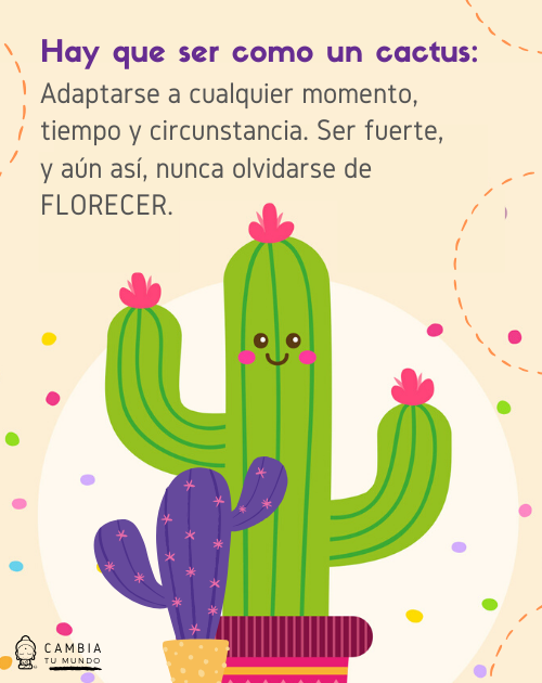 Hay Que Ser Como Un Cactus Motivational Phrases Love Phrases Positive Quotes