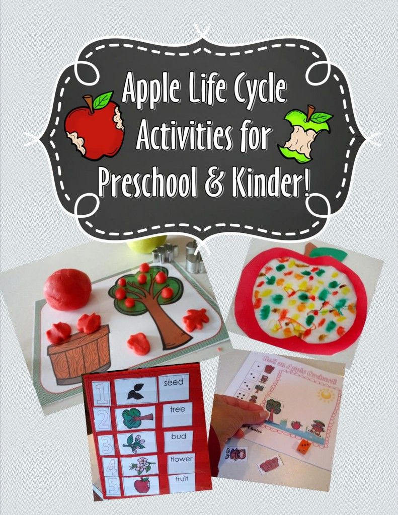 New Apple Life Cycle Packet and Free Printable Apple