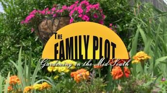 The Family Plot Gardening In The Mid South