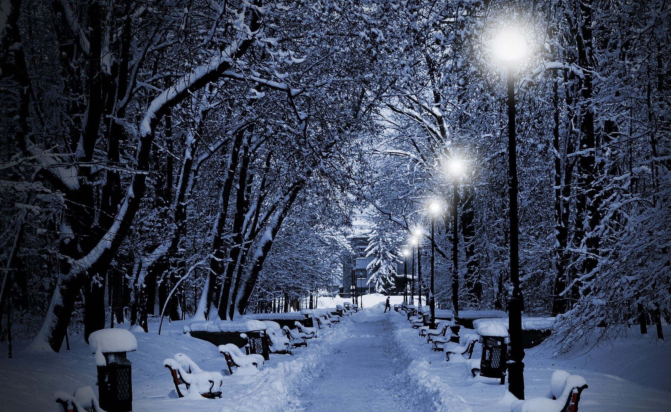 winter snowy nights 2559 1571 magical moments pinterest