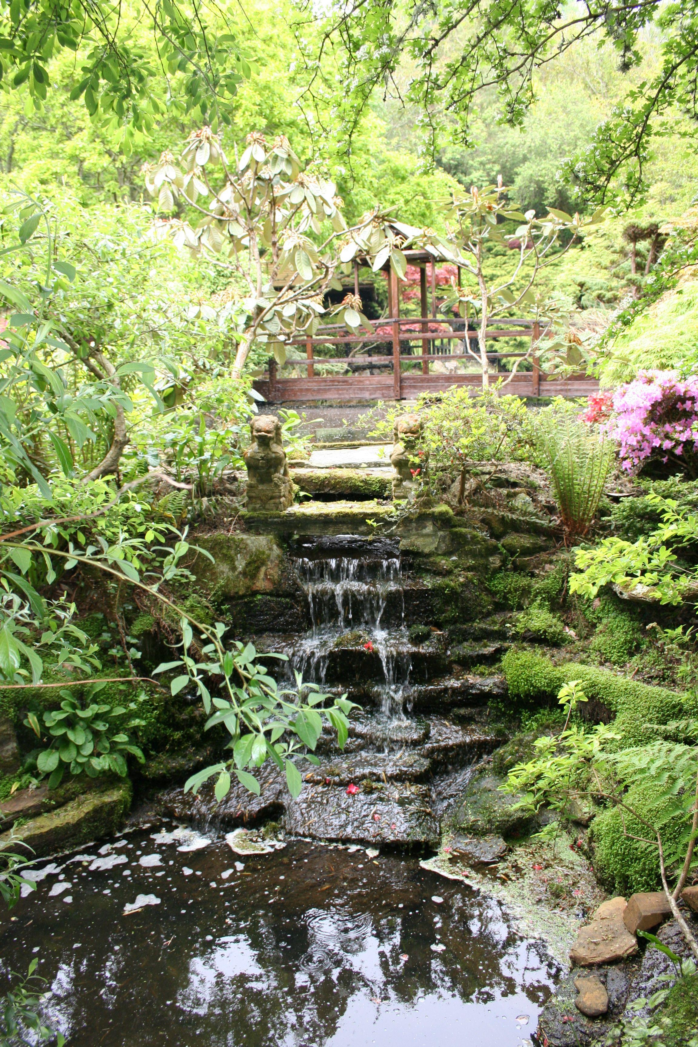 Bonsai Japanese Garden Cornwall Uk Beautiful Garden Idea