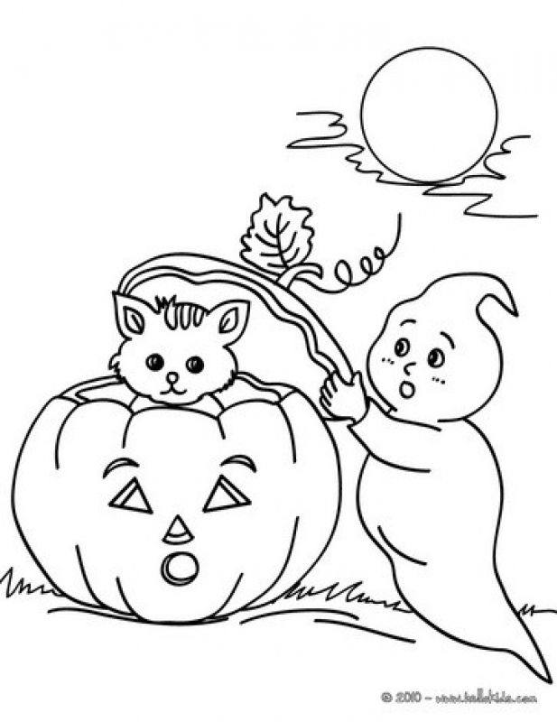 Ghost And Kitten In Halloween Night Coloring Pages Pumpkin