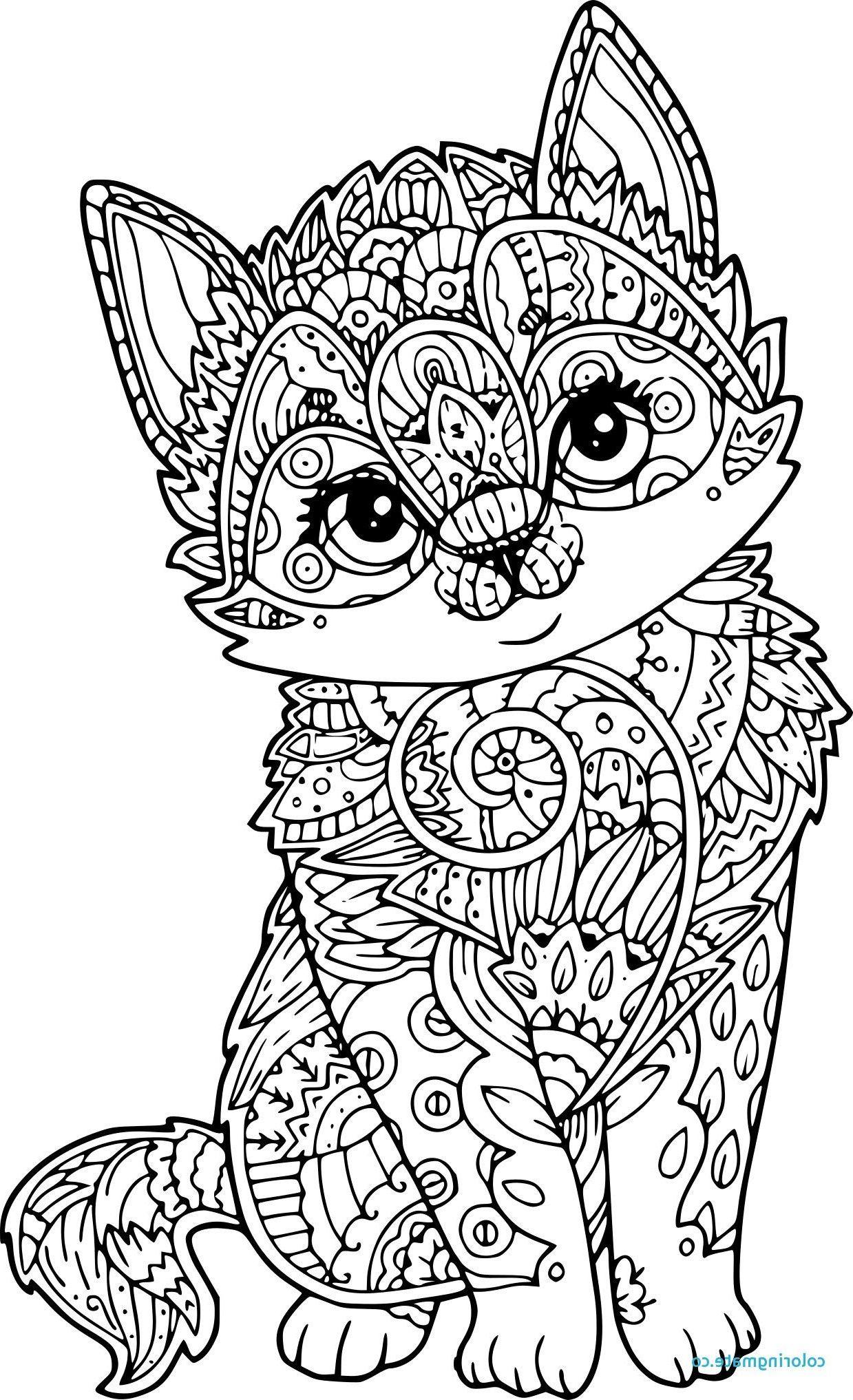 Coloriage Mandala Chat Papillon Fresh Coloriage Chat Mandalas Para Colorear Animales Mandalas Para Colorear Dibujos [ 2034 x 1239 Pixel ]