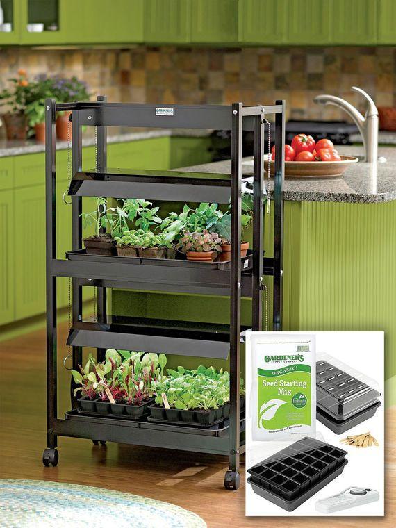 Diy Indoor Greenhouse