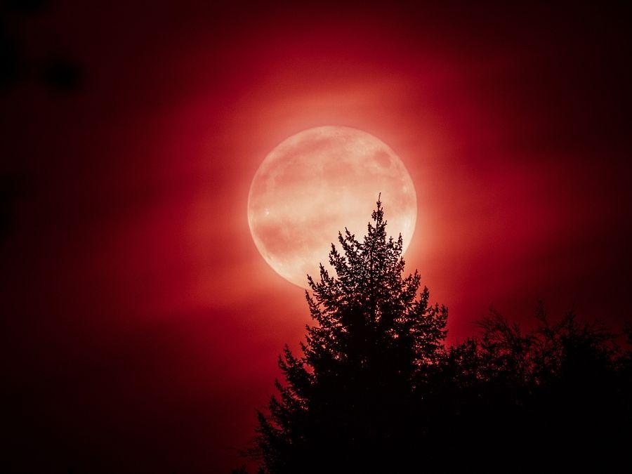 via http://ift.tt/2eBIAKs Supermoon by Philipp Gruner Follow us on Facebook http://ift.tt/1ZBR6Ym