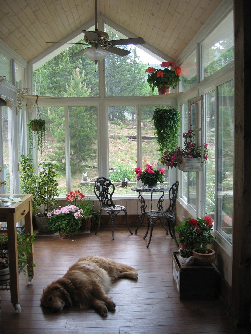 Decoration Luxury Sun Room Decor Ideas With With Brown Ceramic Floor And Green Plant Hanging Decor For Inspir Small Sunroom Sunroom Decorating Sunroom Designs Awesome sunroom design ideas