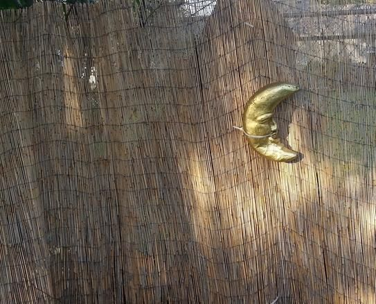 Backyard X-Scapes 6 ft. H x 16 ft. L Reed Fencing-HDD-BIN ...