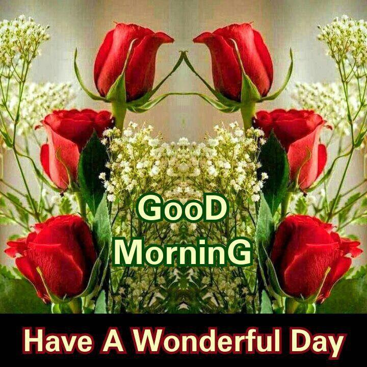 Good Morning Greetings Good Morning Cards Good Morning Greetings Morning Greeting