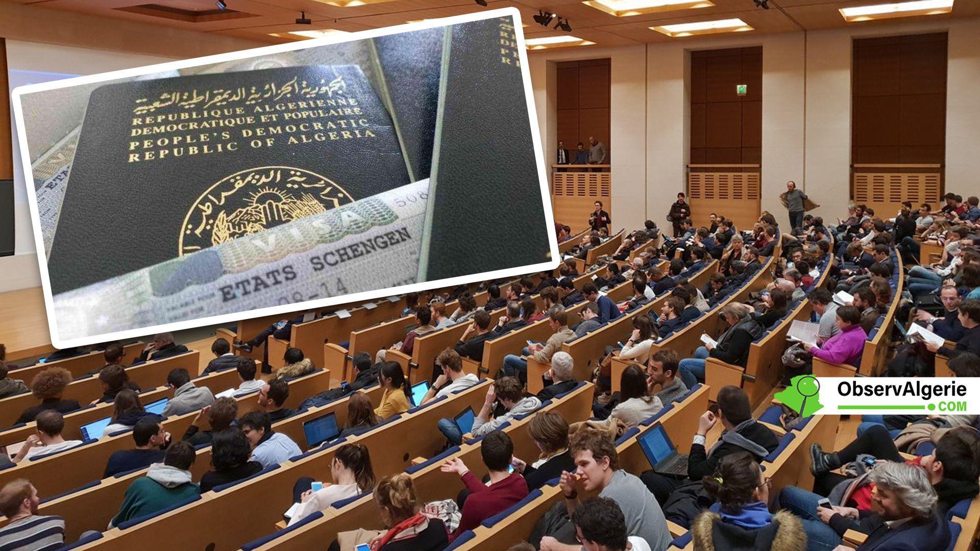 Études en France pour les Algériens Voici la procédure à