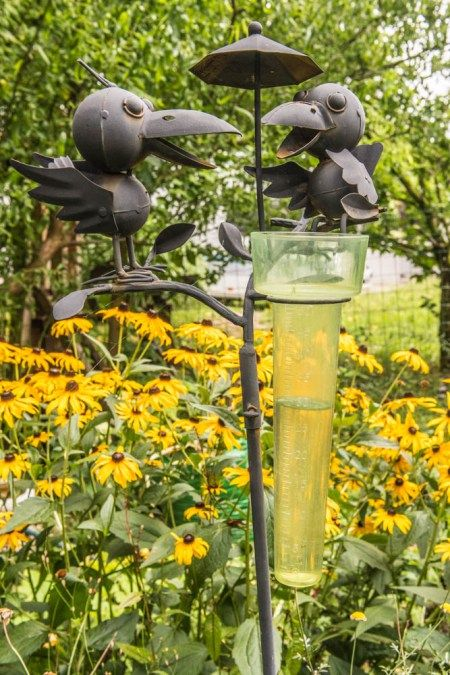 Der Garten Freut Sich Endlich Regen Regen Messer Garten Pflanzen