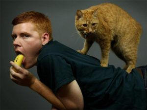 Incredibly Awkward Cat Glamour Shots Gallery Men With Cats