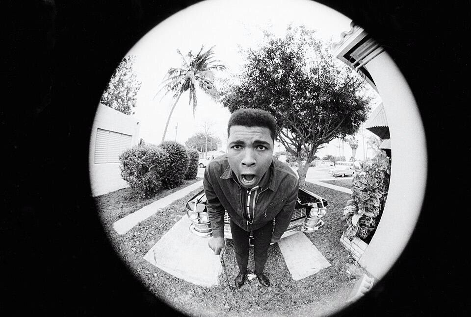 The Champ Is Here Fisheye Photography Photography Projects Art Inspo