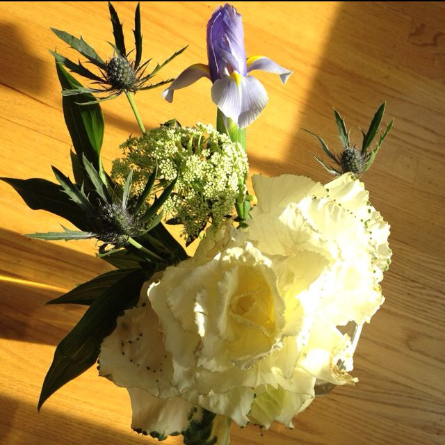 Our fresh flowers of the week -  having fresh flowers around the house brightens my day!  These flowers have such an antique romantic essence about them.  Love them!