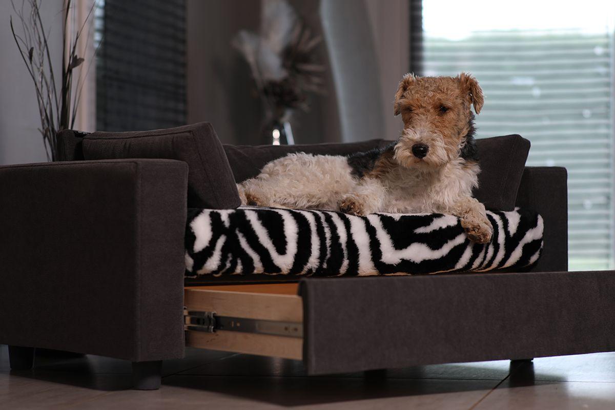 Protege Canape Pour Chat couchage pour chien solide, pratique et original. matelas