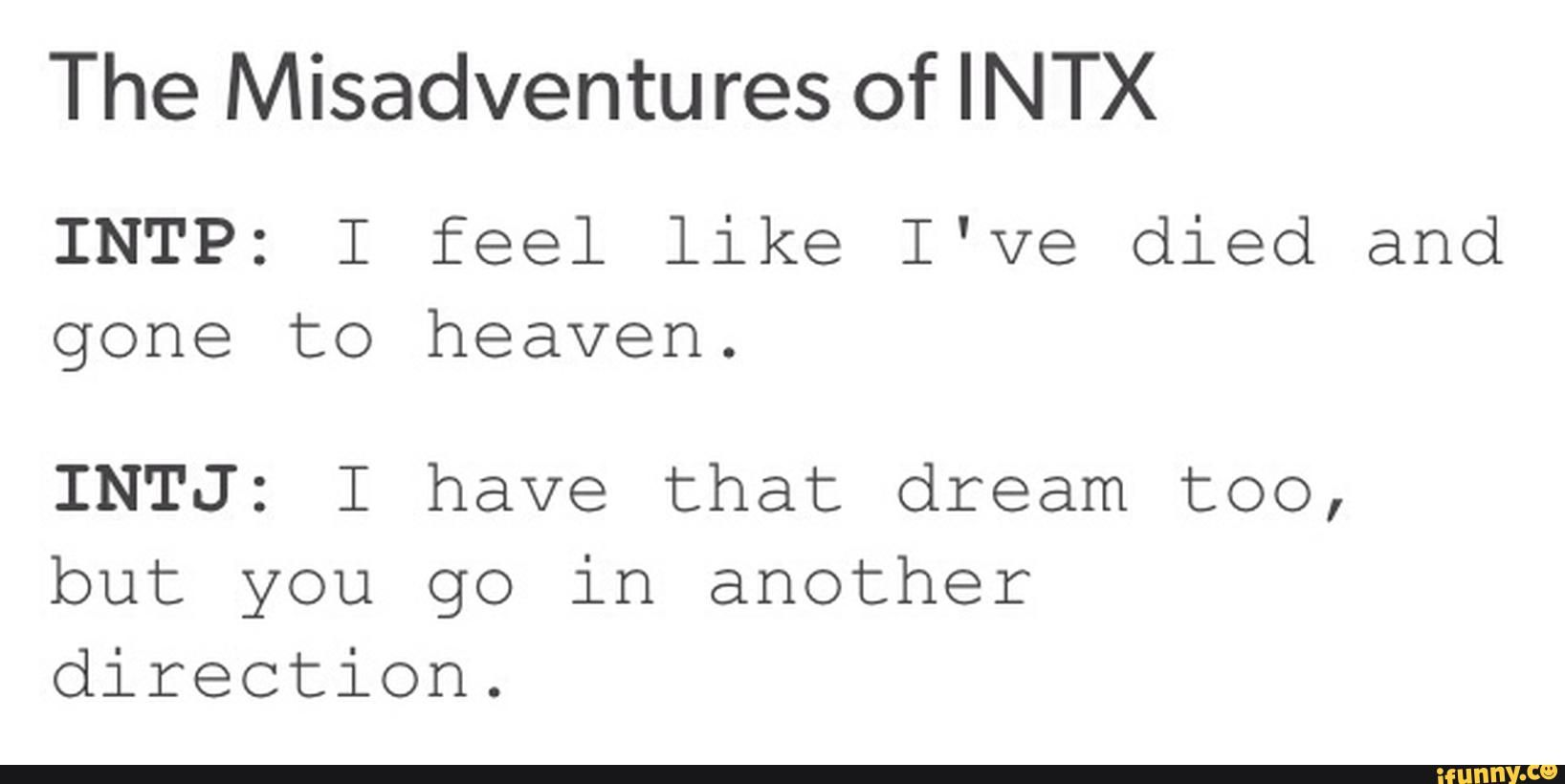 intp intj friendship
