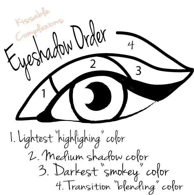 Simple And Easy To Follow Diagram For Applying Eyeshadow