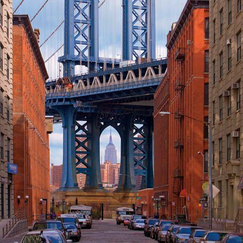 Brooklynu0027s Dumbo Takes Flight