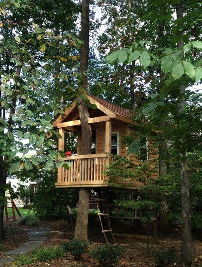 Tree house design ideas also treehouse playhouse pinterest rh