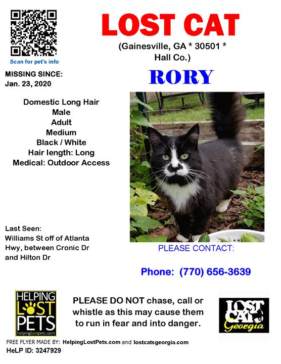 Lost Cat Gainesville GA Jan.23 2020 Closest