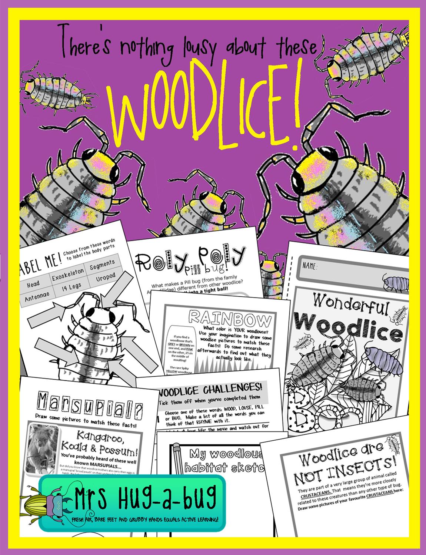 Potato Bug Name : potato, Bugs,, Polies, Potato, Woodlouse, Family!}, Woodlice,, Science