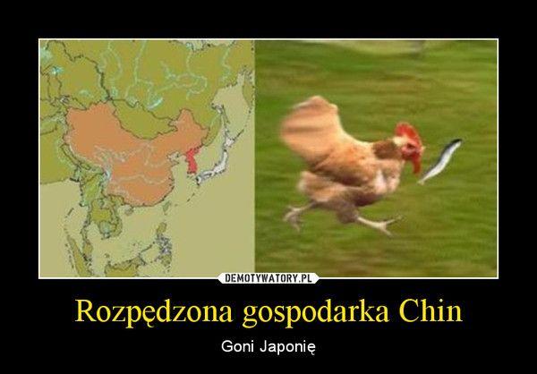 Rozpędzona gospodarka Chin – Goni Japonię | Funny memes, Historical memes,  Funny mems