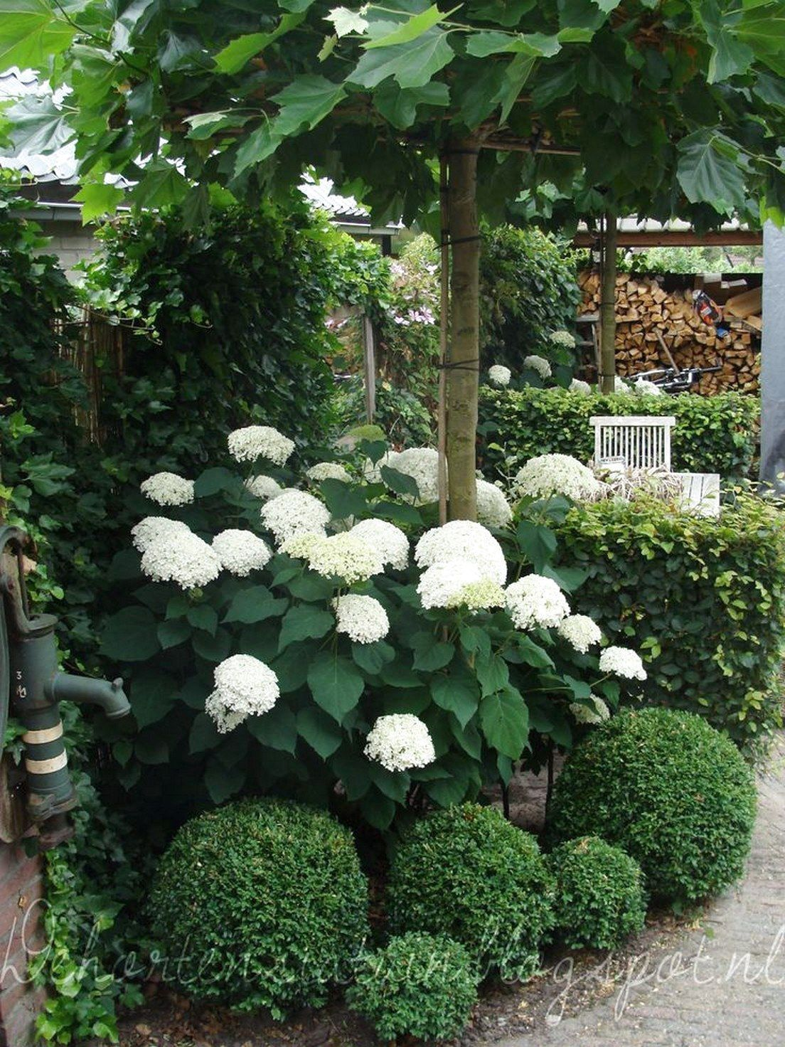 ✔48 Best Small Yard Landscaping & Flower Garden Design Ideas #SmallYardLandscaping     #FlowerGarden #gardendesignideas Because you have a small garden, it doesn't want to work a lot. A small garden can be very exotic with just a little planning. Improving a beautiful modern garden does not require much payment. Designing the front garden is… Continue Reading →