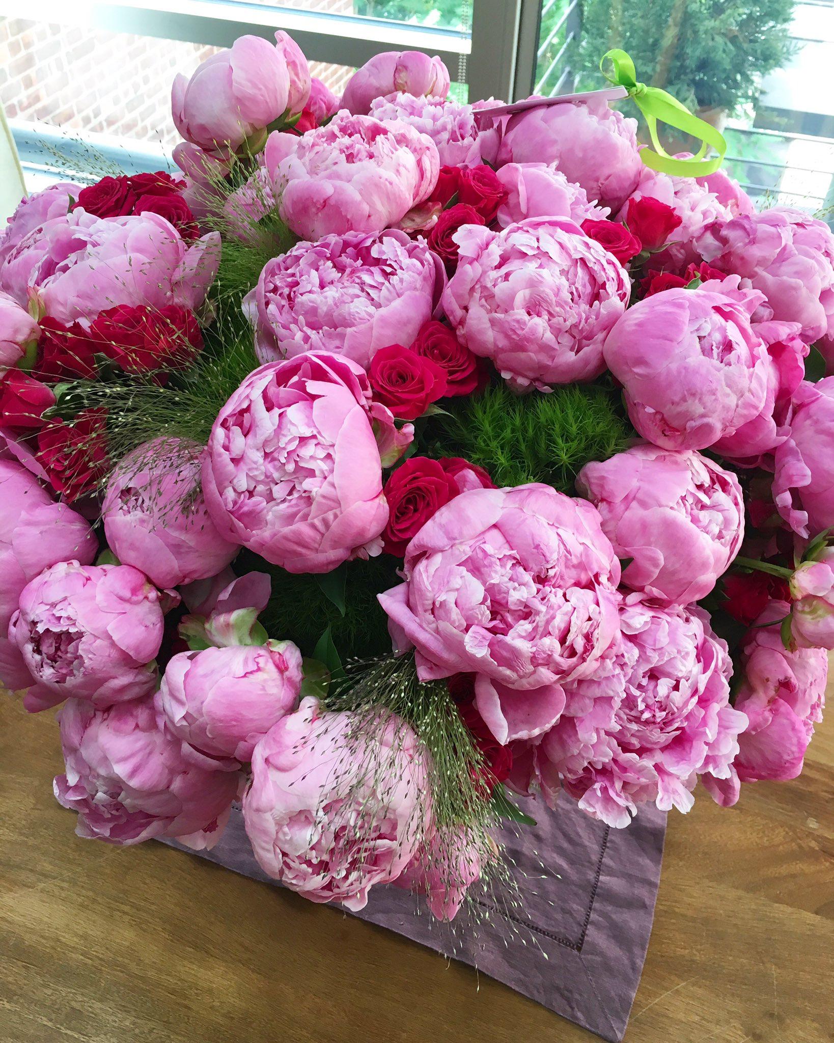 зрители, цветы пионы открытки красивые своему