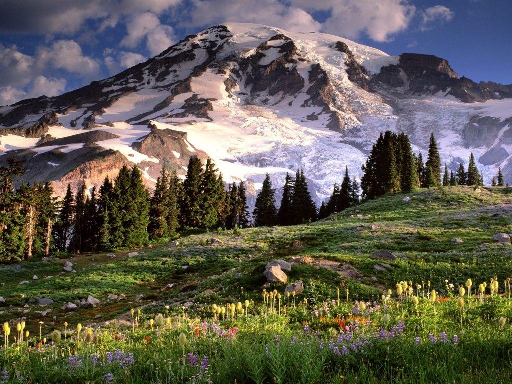 Mountain Scenes Wallpaper Spring Mountain Scene Windows 8 Wallpaper Wallpapers X Mount Rainier National Park Rainier National Park National Parks