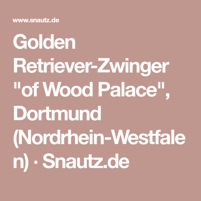"Golden RetrieverZwinger ""of Wood Palace"", Dortmund"