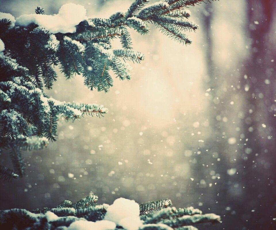 Winter snow christmas silence