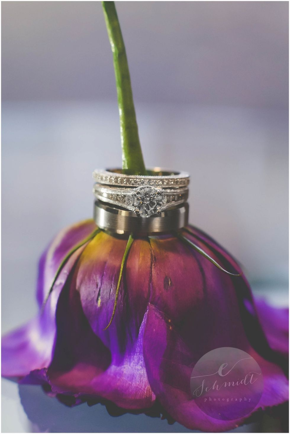 Ring Shot | E Schmidt Photography | Metro Detroit Wedding Photographer